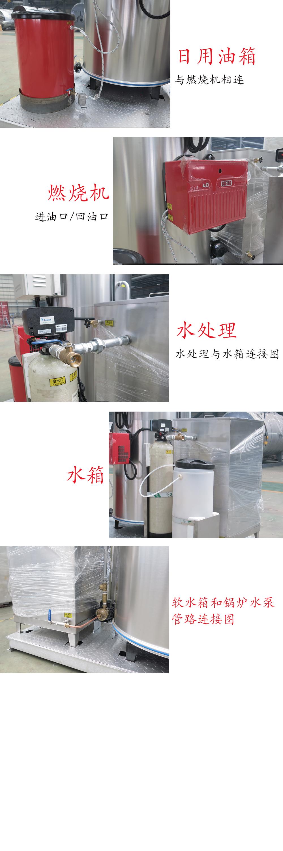 细节图_LWS燃油撬装锅炉系统.jpg